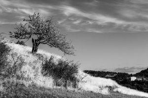 Ardèche-105.jpg